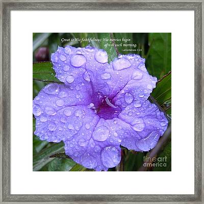 After The Rain #3 Framed Print by Robert ONeil