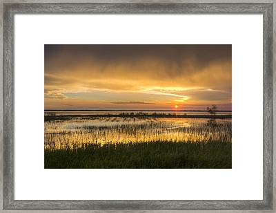 After The Rain Framed Print by Debra and Dave Vanderlaan