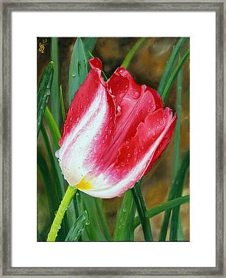 After The Rain Framed Print by Glenn Beasley