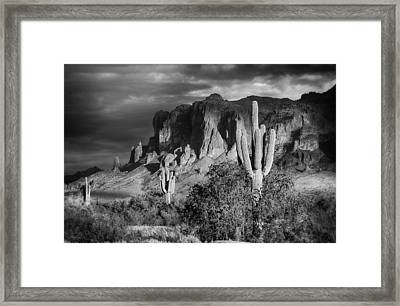 After The Rain In Black And White  Framed Print