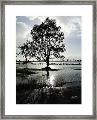 After The Rain Framed Print by Janice OConnor