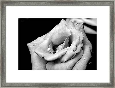 Framed Print featuring the photograph After The Rain by Karen Kersey
