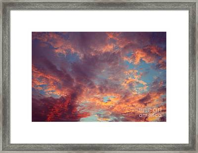 After The Rain Framed Print by Mary-Lee Sanders