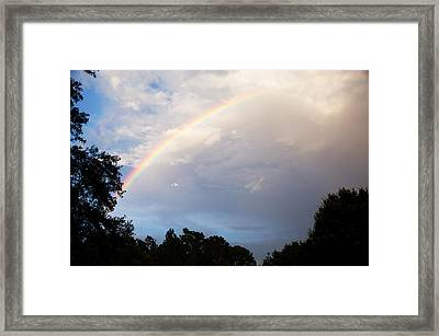 After The Rain Framed Print by Randi Kuhne