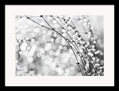 Theresa Leigh Framed Prints