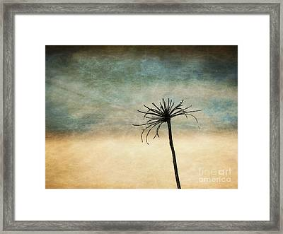 Framed Print featuring the photograph After The Season by Vicki DeVico
