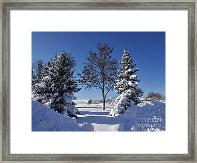 After The Snow Framed Print by Graham Taylor