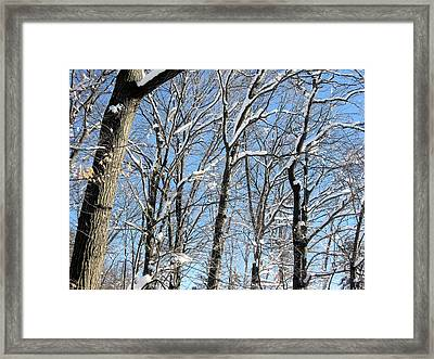 Framed Print featuring the digital art After The Snowfall 1 by Dennis Lundell