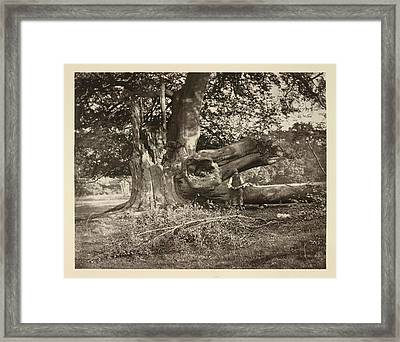 After The Storm Framed Print by British Library