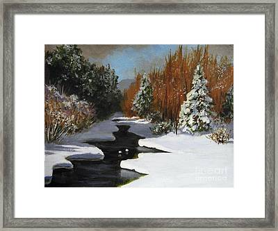 After The Storm Framed Print by Carol Hart