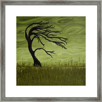 After The Storm Framed Print by Holly Anderson