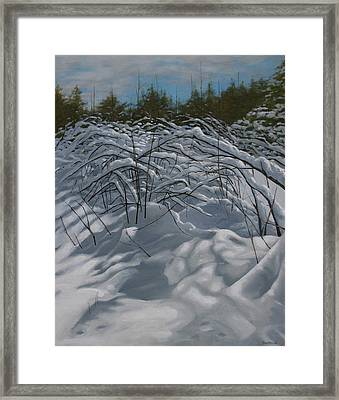 After The Storm Framed Print by Jason Sawtelle