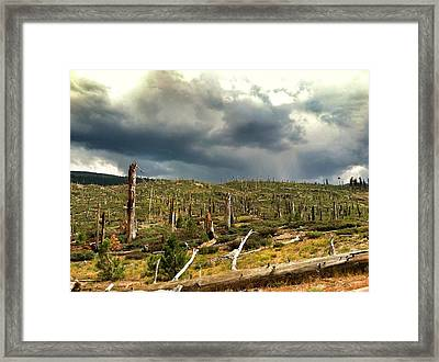 Aftermath Framed Print by Edward Hamm
