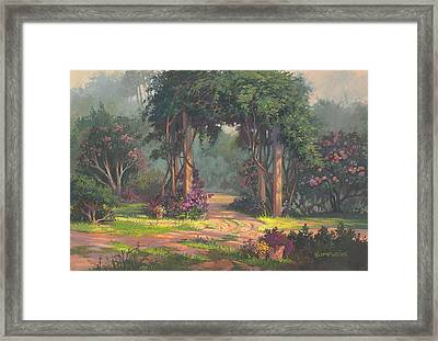 Afternoon Arbor Framed Print by Michael Humphries