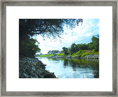 Afternoon At Taylor Creek Framed Print by Megan Dirsa-DuBois