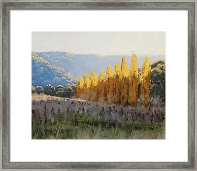 Afternoon Autumn Light Framed Print by Graham Gercken