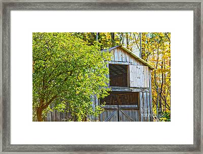 Afternoon Delight Framed Print by A New Focus Photography