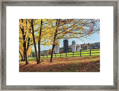 Afternoon Delight Framed Print by Bill Wakeley