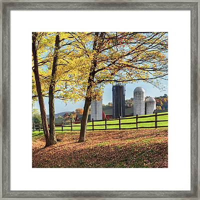 Afternoon Delight Square Framed Print by Bill Wakeley