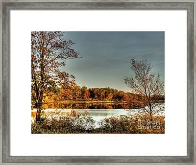 Afternoon Delight Framed Print