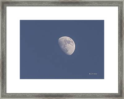 Afternoon Half Moon Framed Print by Angela A Stanton