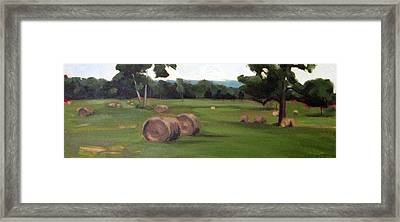 Afternoon Hay Framed Print by Erin Rickelton