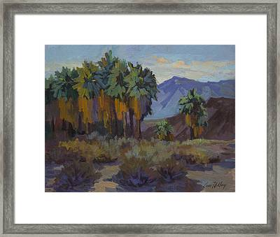 Afternoon Light At Thousand Palms Framed Print