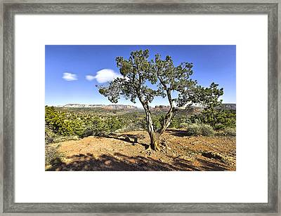 Framed Print featuring the photograph Afternoon Light In Sedona Arizona by James Steele