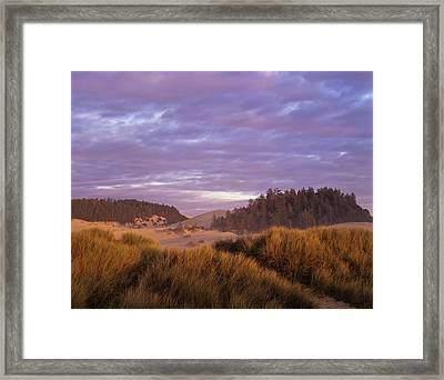 Afternoon Light Warms The Umpqua Dunes Framed Print by Robert L. Potts