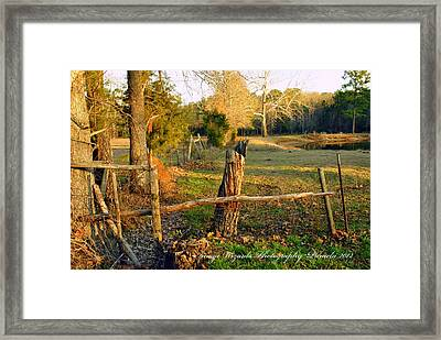 Afternoon Orange Gold Glow On The Old Broken Fence Framed Print by ARTography by Pamela Smale Williams