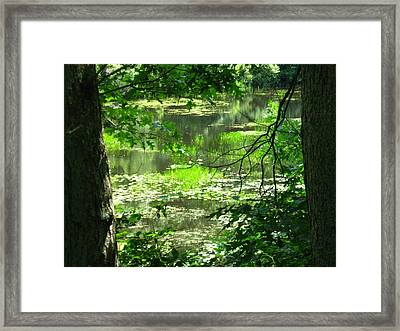 Afternoon Reflections Framed Print by Bruce Carpenter
