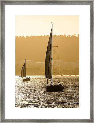 Afternoon Sails A2892 Framed Print