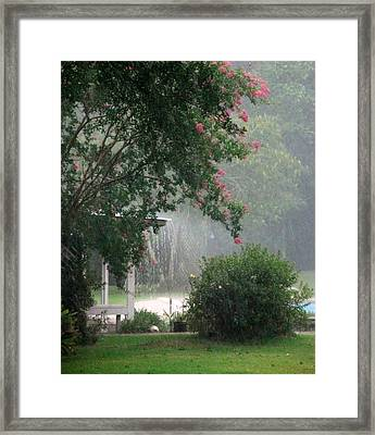 Afternoon Showers Framed Print by N S