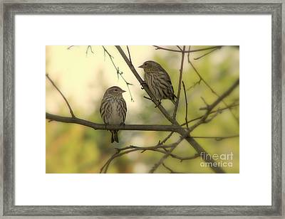 Afternoon Sit Framed Print