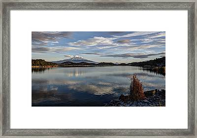 Afternoon Solitude Framed Print by Loree Johnson