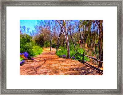 Afternoon Walk Framed Print by Michael Pickett