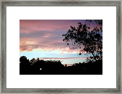 Against The Blue Sky Framed Print