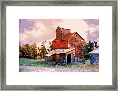 Against The Grain Framed Print by Marty Koch