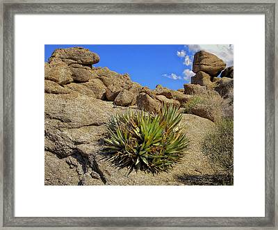 Against The Odds Framed Print by Michael Pickett