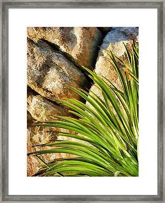 Against The Rocks Framed Print by Scott Campbell