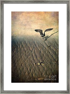 Against The Tide Framed Print by Ellen Cotton