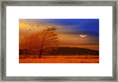 Against The Wind Framed Print by Holly Kempe