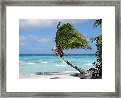 Against The Winds Framed Print by Jola Martysz