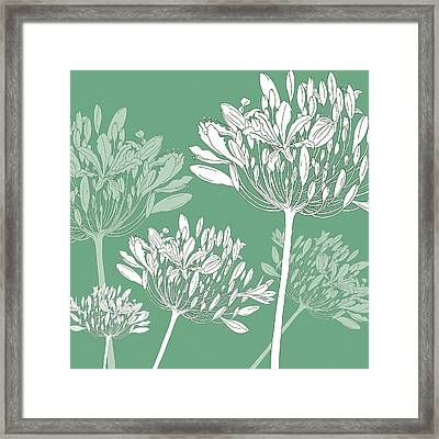 Agapanthus Breeze Framed Print by Sarah Hough