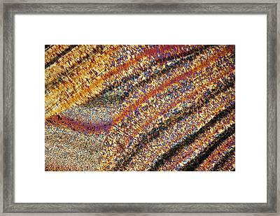 Agate Framed Print by Steve Lowry