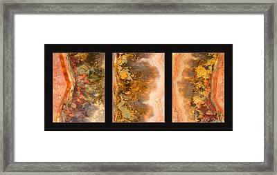 Agate Triptych 2 Framed Print by Leland D Howard