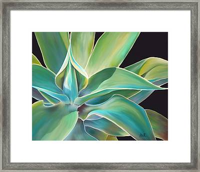 Agave 2 Framed Print by Laura Bell