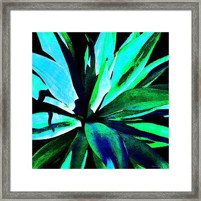 Agave - High Contrast Art By Sharon Cummings Framed Print