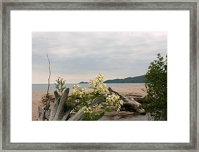 Framed Print featuring the photograph Agawa Bay by Paula Brown