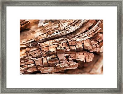 Aged Beyond Perfection Framed Print